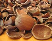 ヘーゼルナッツの殻